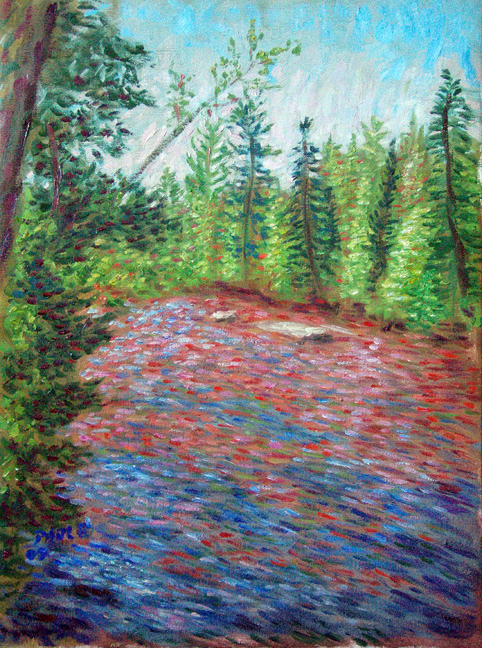 bois brule river lake superior paintings and prints by paulb. Black Bedroom Furniture Sets. Home Design Ideas