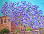 """The Jacaranda Tree"""