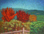 """Fall in the Napa Valley"""