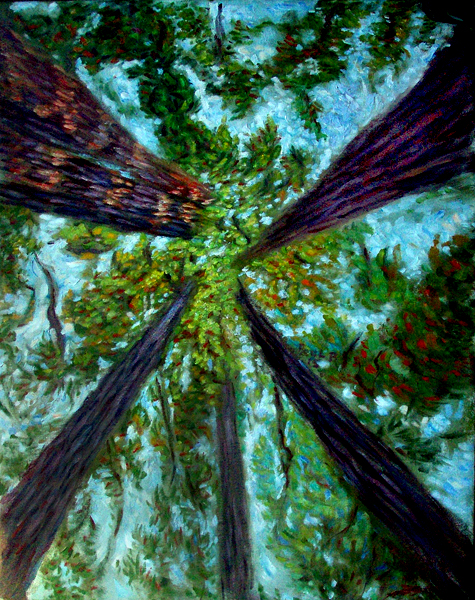 Redwood Canopy  California Redwoods oil painting and prints by Pointillistic/Impressionist painter Paul  sc 1 st  Paul Berenson & Redwood Canopy