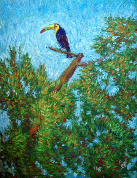 """Toucan in the Amazon"" Brazil Amazon oil painting and prints by Pointillistic/Impressionist painter Paul Berenson"